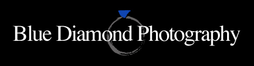 Blue Diamond Photography Blog logo